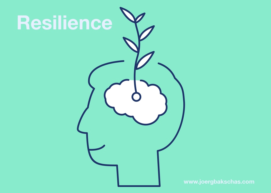Resilience web